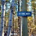 Clear signage throughout the Ski Hill Trails.- Leavenworth Ski Hill Trails
