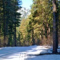 Spring skiing on the Leavenworth Winter Sports Club Trails.- Leavenworth Ski Hill Trails