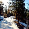 You gain and lose some elevation on the Ski Hill Trails.- Leavenworth Ski Hill Trails