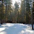 Ski Hill Trail, Leavenworth Winter Sports Club Trails.- Leavenworth Ski Hill Trails