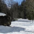 Large boulder on the route.- Lake Elizabeth Snowshoe