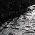 Money Creek in the afternoon.- Lake Elizabeth Snowshoe