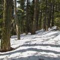 Inside Wenatchee National Forest.- Hex Mountain