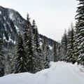 The trail to Twin Lakes begins in open scenery.- Twin Lakes