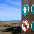 Check your animals: dogs and horses are prohibited in certain areas of the park.- Napa River Bay Trail + Glass Beach