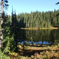 Cultus Lake.- Cultus Creek to Lemei Rock
