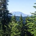 Mount St. Helens (8,365').- Cultus Creek to Lemei Rock