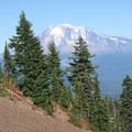 Mount Adams (12,281').- Cultus Creek to Lemei Rock