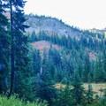 Bird Mountain (5706').- Cultus Creek to Lemei Rock