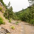 Klickitat Trail.- Klickitat Trail, Lyle Trailhead