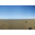 Copalis Beach panorama in Griffiths-Priday State Park.- Griffiths-Priday State Park