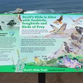 Birds of Devils Slide.- Devils Slide Trail