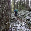 Winter brings a dusting of snow to the mountain.- Eula Ridge Hike