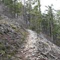 Wind Mountain Trail.- Wind Mountain