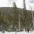 Powderhouse Peak's north aspect is the most direct ascent route. - Powderhouse Peak