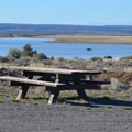 Picnic area at Chickahominy Reservoir.- Chickahominy Reservoir
