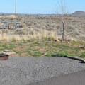 Campsite at Chickahominy Reservoir.- Chickahominy Reservoir