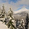 Winter wonderland, Mount Hood National Forest.- Barlow Butte Hut