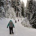 Snowshoeing on Road 221.- Barlow Butte Hut