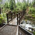 Bridge at Gatton Creek in the Quinault National Trail System.- Quinault National Recreation Trail System, Gatton Creek Falls Loop