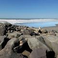 Ocean Shores Beach at Point Brown North Jetty.- Ocean Shores Beach