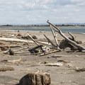 View east toward Damon Point from Oyhut Wildlife Recreation Area and Beach.- Oyhut Wildlife Recreation Area + Beach