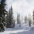 Powder, hemlocks, sun, and clouds coverge to create a ethereal atmosphere on Hidden Peak's upper half.- Hidden Peak