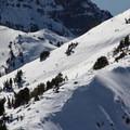 Diller's east ridge.- Mount Diller Backcountry Ski: Southwest Chute