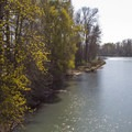 The Willamette River from the Ruth Bascom Riverbank Trail System.- Ruth Bascom Riverbank Trail System
