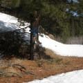 The Yellow Belly Loop Trailhead.- Old Blewett Pass Highway Ski Trails