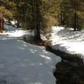 Below the Swauk Creek crossing point.- Old Blewett Pass Highway Ski Trails