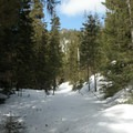 The climb to the return creek crossing.- Old Blewett Pass Highway Ski Trails