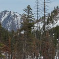 Looking north to Icicle Ridge.- Eightmile Creek