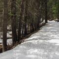 Following Chiwaukum Creek Road.- Chiwaukum Creek