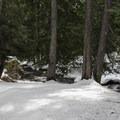 Campsite.- Chiwaukum Creek