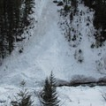 Avalanche slope into the creek.- Chiwaukum Creek