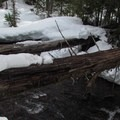 Snow-covered log over Chiwaukum Creek.- Chiwaukum Creek