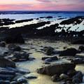 Kelp Cove at the Fitzgerald Marine Reserve.- Fitzgerald Marine Reserve
