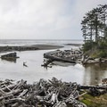 Kalaloch Creek.- Kalaloch Beach + Rocks