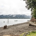 Beach at Lake Quinault Lodge.- Lake Quinault Lodge