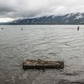 Beach along the Quinault National Recreation Trail System.- Lake Quinault Lodge