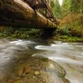 Bridge over Cascade Creek on the Quinault National Recreation Trail System.- Quinault National Recreation Trail System, Cedar Loop