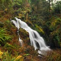 Cascade Falls on the Quinault National Recreation Trail System.- Quinault National Recreation Trail System, Cedar Loop