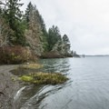 View of Lake Quinault from Gatton Creek Campground.- Lake Quinault, Gatton Creek Campground