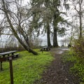 Day use picnic area in Gatton Creek Campground.- Lake Quinault, Gatton Creek Campground