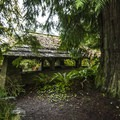 Picnic shelter in Falls Creek Campground.- Lake Quinault, Falls Creek Campground
