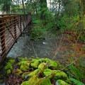 Falls Creek running through Falls Creek Campground.- Lake Quinault, Falls Creek Campground