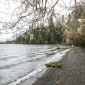Day use area along Lake Quinault in Willaby Campground.- Lake Quinault, Willaby Campground