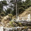 Access bridge to Kalaloch Beach 4.- Kalaloch Beach 4
