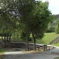 Sequoia Ampitheater in Huddart Park.- Huddart Park